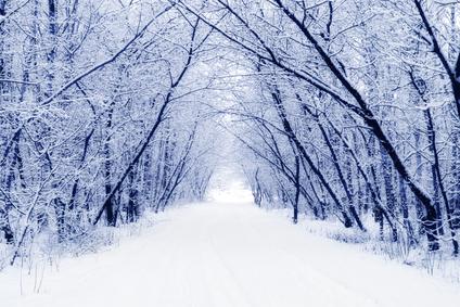 Vánoce a Zimní slunovrat v tradici BOHYNĚ