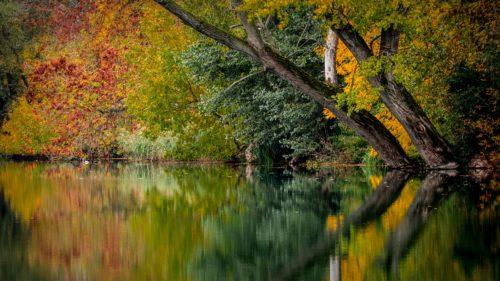 Jak se vnitřně vyrovnat se změnami v životě
