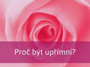 krásná růže