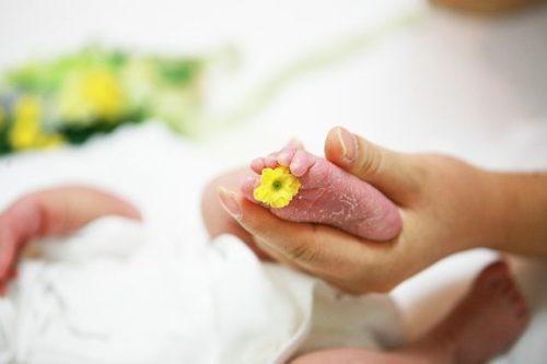 respekt k porodu